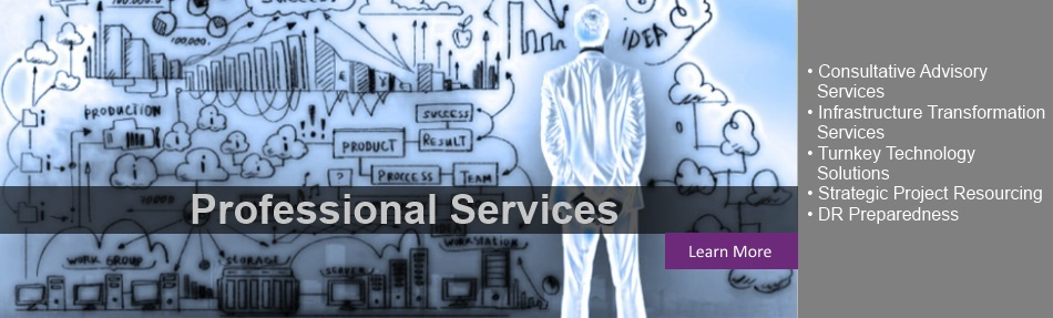 ProfessionalServices